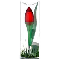 Tulips from Amsterdam Rood 30 ml eau de toilette spray