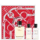 Hermès Terre d'Hermès 50 ml giftset